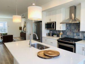 Onyx+East Open Concept Kitchen